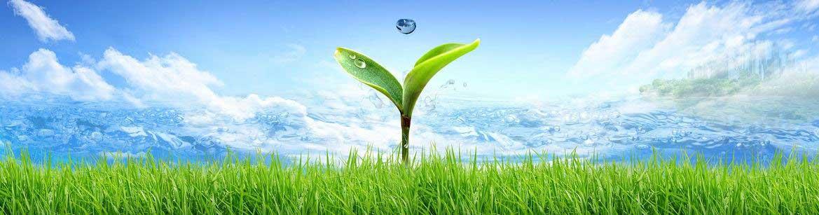 politica_mediu